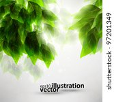 beautiful green leaves  eco... | Shutterstock .eps vector #97201349