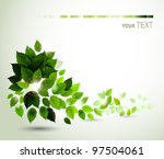 branch with fresh green leaves | Shutterstock .eps vector #97504061
