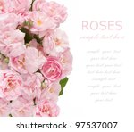 tea roses wedding background... | Shutterstock . vector #97537007