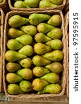ripe green pears of a grade in... | Shutterstock . vector #97595915