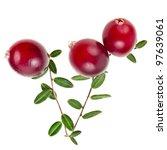 Fresh Natural Cranberries...