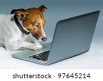 Dog Using A Computer And...