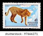 hungary   circa 1981  the... | Shutterstock . vector #97666271