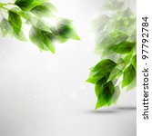 beautiful green leaves  eco... | Shutterstock . vector #97792784
