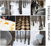 Maple Syrup Production In...