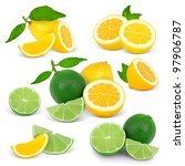 collection of lime and lemon... | Shutterstock . vector #97906787