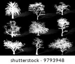 trees silhouettes to represent... | Shutterstock . vector #9793948