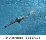 shark diver pursues | Shutterstock . vector #98117135