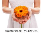 Orange African Daisy In Woman'...