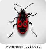 red beetle  hand drawing....