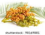 Palm Tree Fruits On White...