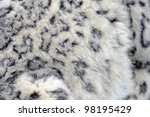 Snow Leopard Close Up Abstract...