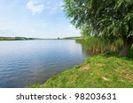 Summer Rushy Lake View With...