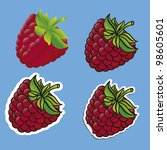 different types of blackberries ... | Shutterstock .eps vector #98605601