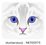 close up of cat face | Shutterstock . vector #98705975