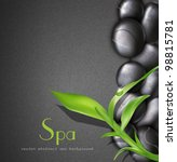 vector background of a spa with ... | Shutterstock .eps vector #98815781