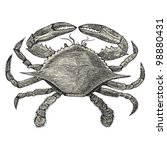 "Crab - vintage engraved illustration - ""Dictionnaire encyclop�©dique universel illustr�©"" By Jules Trousset - 1891 Paris"