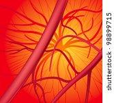 circulatory system. rasterized... | Shutterstock . vector #98899715