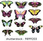 butterfly set vector... | Shutterstock .eps vector #9899203