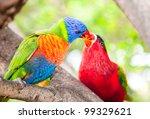 australian rainbow lorikeets.... | Shutterstock . vector #99329621