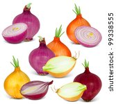 collection of onions with... | Shutterstock . vector #99338555