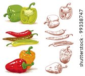 set of peppers. vector version... | Shutterstock . vector #99338747