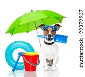 Stock photo dog sunbathing with air mattress 99379937