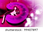 digital illustration of  kidney ... | Shutterstock . vector #99407897