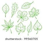 set of green leaves isolated on ... | Shutterstock .eps vector #99560705