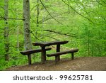 Wooden Bench By Walking Path I...