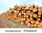 Freshly harvested Scots Pine (Pinus sylvestris) logs on a stack. Environmental concept. - stock photo