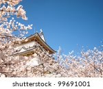 japanese castle and cherry... | Shutterstock . vector #99691001