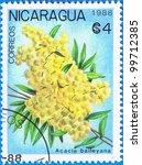 Small photo of NICARAGUA - CIRCA 1988: A stamp printed in Nicaragua shows Acacia baileyana, series, circa 1988