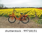 Orange Bicycle From Holland At...