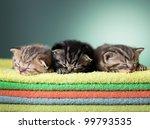 Three Sleeping Scottish Baby...