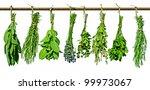Various Fresh Herbs Hanging On...
