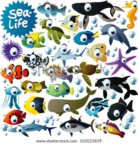 big vector sea life animals set