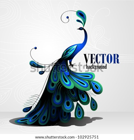 peacock vector background