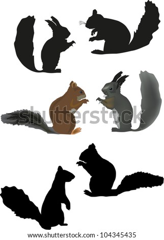 illustration with six squirrels