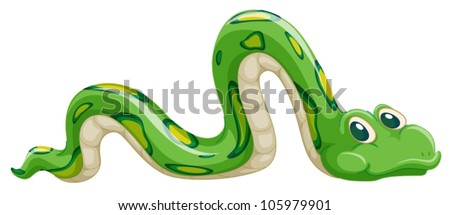 illustration of green snake on
