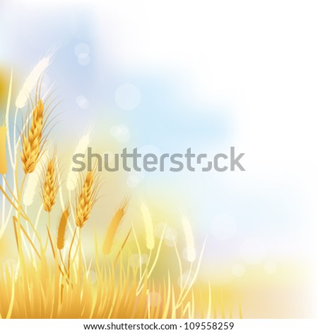 crop background