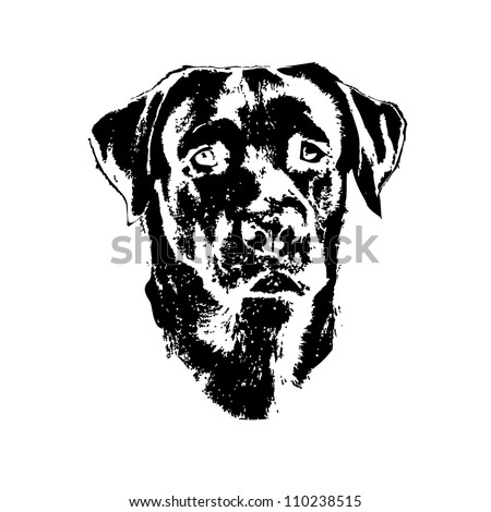 Labrador Retriever Free Vector besides Earth West Talks Blogs Tweets In Speech 2259017 moreover Europe 14707901 as well Mountain Top Icons 19557160 in addition Cartoon Potato Running 179451. on home map design free downloads