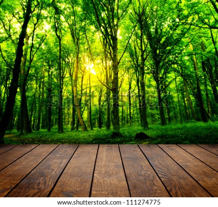 outdoor woods backgrounds. Fence Background Free Stock Photos Download (9,009 Photos) For Commercial Use. Format: HD High Resolution Jpg Images Outdoor Woods Backgrounds U