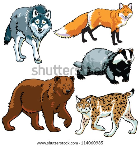 set of animals wild predators