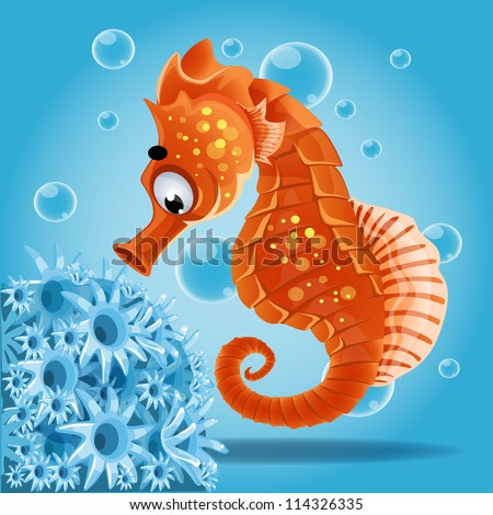 sea  horse on a blue background