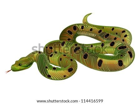 beautiful green snake realistic