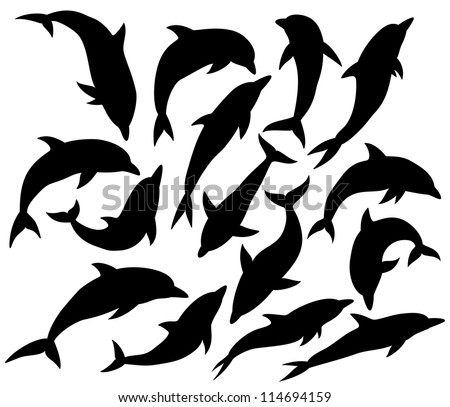 silhouette of dolphin isolated