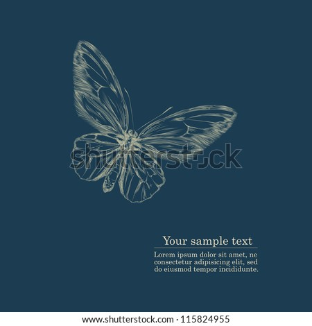 vintage hand drawing butterfly