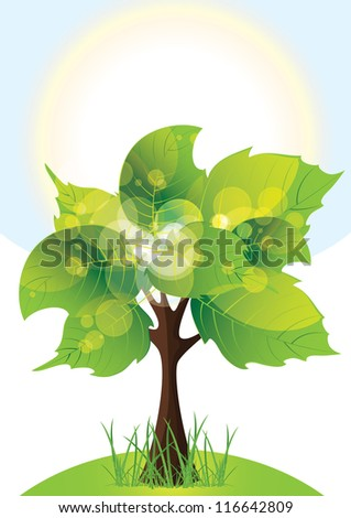 tree with lush green foliage