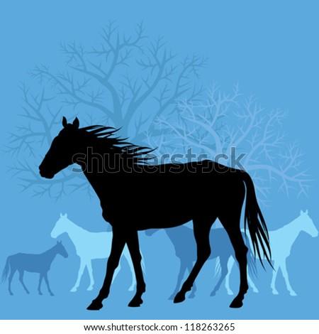 horses in field vector